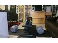 Gym Bench + Dumbells