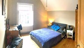 Large double room in lovely flat in South East London