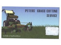 grass cutting service also do hedge cutting