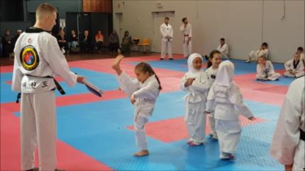 Taekwondo/ Martial arts