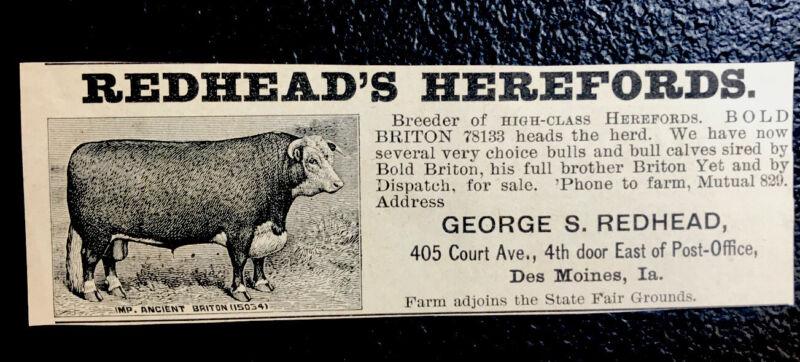 1900 George Redhead Farm Cattle Advertising - Des Moines - Iowa - Cow