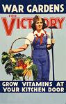 VictoryGarden13