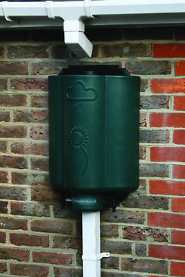 Rainwater Hub