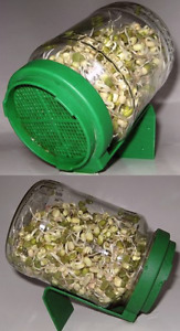 Sprouting lid with jar.