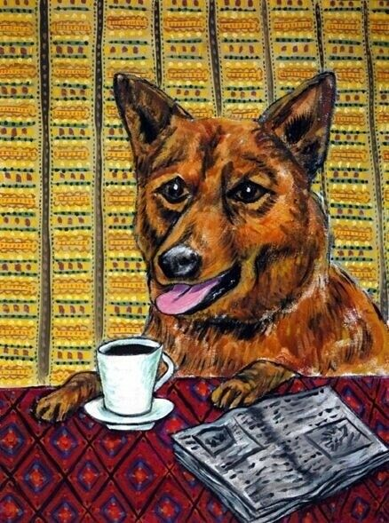 FINNISH SPITZ DOG art PRINT coffee wall print 13x19  JSCHMETZ