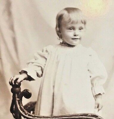 Antique Photo ~ Sweet Little Smiling Girl Standing by Wicker Gate from Erie, PA ()