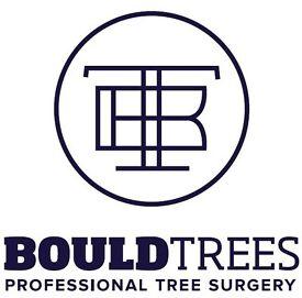 Bould Trees - Professional Tree Surgery