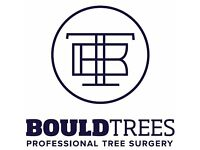 Bould Trees - Professional Tree Surgery