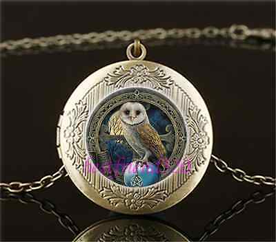 Vintage Wicca Owl Photo Cabochon Glass Brass Chain Locket Pendant Necklace - Owl Photo