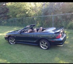1994 Ford Mustang 5.0 ho