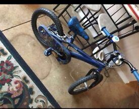 Skylander bike