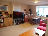 Housemate wanted – 2 bed flat Clifton, Bristol £475 PM