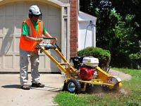 Stump grinder used only few times like new