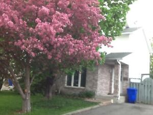 VERY NICE SEMI-DETACHED IN GATINEAU