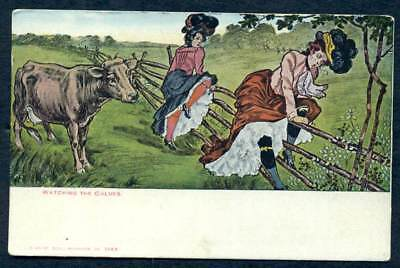 COMIC POSTCARD VICTORIAN WOMEN & COW