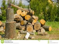FIREWOOD FOR SALE BELLEVILLE. DO NOT WAIT BE PREPARED.