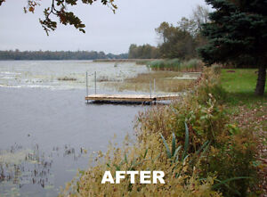 aquatic weed removal services Kingston Kingston Area image 7