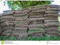 Grass sods (wanted