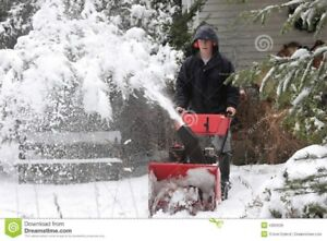 PARTS FOR ALL SNOW BLOWERS, CHAINSAWS AND OTHER SMALL ENGINES