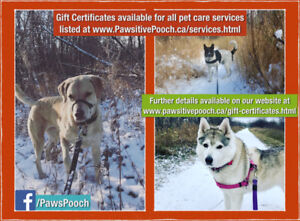 Gift Certificates Available for Professional Pet Care Services