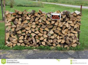 Bois de chauffage aux prix compétitif 438 290 5119