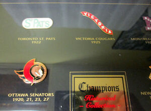 1997 NHL STANLEY CUP CHAMPIONS FRAMED PIN COLLECTION! LEAFS.... Peterborough Peterborough Area image 8