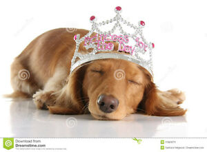 PRINCESS POOP ANIMAL WASTE AND GRASS CUTTING