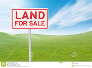LAND FOR SALE ON BETHEL ROAD