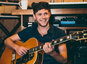 Niall Horan- Section 203, Row J- Budweiser Stage- Sept. 5