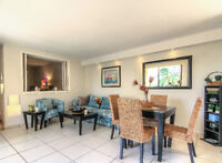 Newly Remodeled Beachfront Condo Close to Everything!