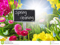 SPRING CLEANING SPECIAL by Professional Cleaner/Organizer