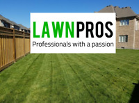 Weed control & Grass cutting. Services starting at $30.