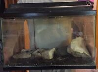 20 gallon fish tank with rocks