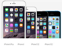 Unlocked Apple Iphone 5C,5S,Iphone 6+, 16g,32g,64g, All Networks