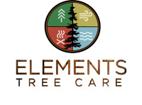 Tree Removal, Tree Pruning, Storm Damage - Arborist Services