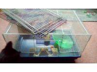 Hamster cage & playpen