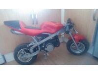 Mini moto in good working order