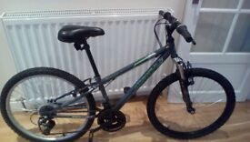 Apollo Switch 24 '' junior mountain bike.