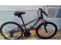 Apollo Switch 24 '' junior mountain bike.