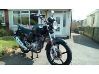 Really clean and tidy 66 plate Lexmoto ZSF 125cc