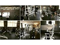 Full gym of equipment