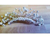 Champagne Wedding dress with extra long train /veil /headdress