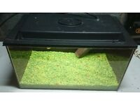 Clearseal tropical fish tank / aquarium 45 x 25 x 26 (L x W x D)