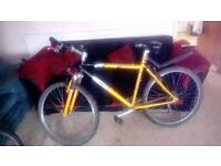 Universal carrera mountain bike