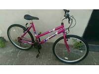 Ladies mountain bike 18 inch frame