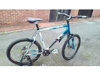 Trek mans mountain bike