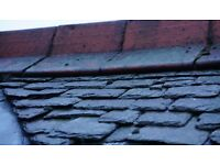 Antique ornamental red roof hips