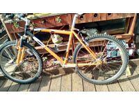Carrera Kraken Bicycle