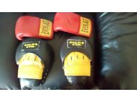 Gold's Gym punch pads and Everlast gloves