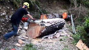 Chainsaw Mill Packages at CR Yardworks & Equipment